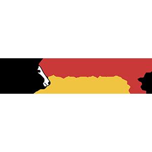 GERMAN PAINT Logo
